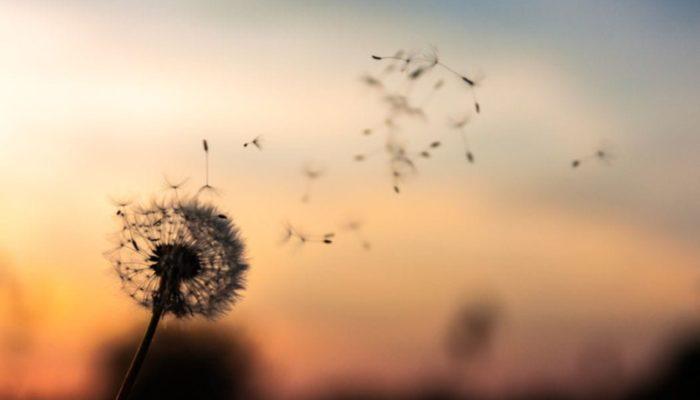 Meditación del perdón para dejar ir el pasado